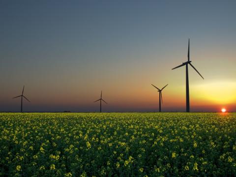 A formação permite que os alunos sejam capazes de desenvolver projetos de energia renovável. Foto: Wikicommons/Jürgen (CC)